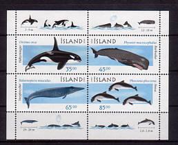 1999. - Морские млекопитающие.